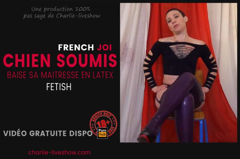 Read more about the article Petit chien soumis, viens vite baiser ta maitresse – JOI fetish & SM