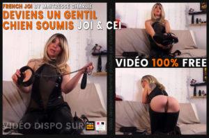 Read more about the article Deviens un bon chien et obéis à Maitresse Charlie – vidéo SOUMISSION