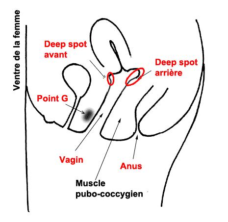 02 - deep-spot-1.png