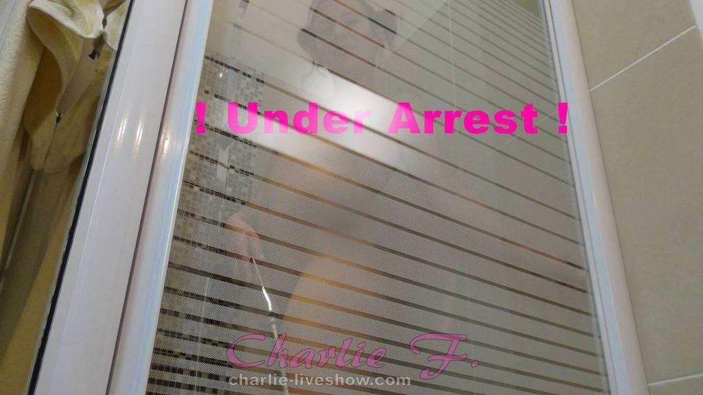 02 - prostitution-under-arrest.jpg