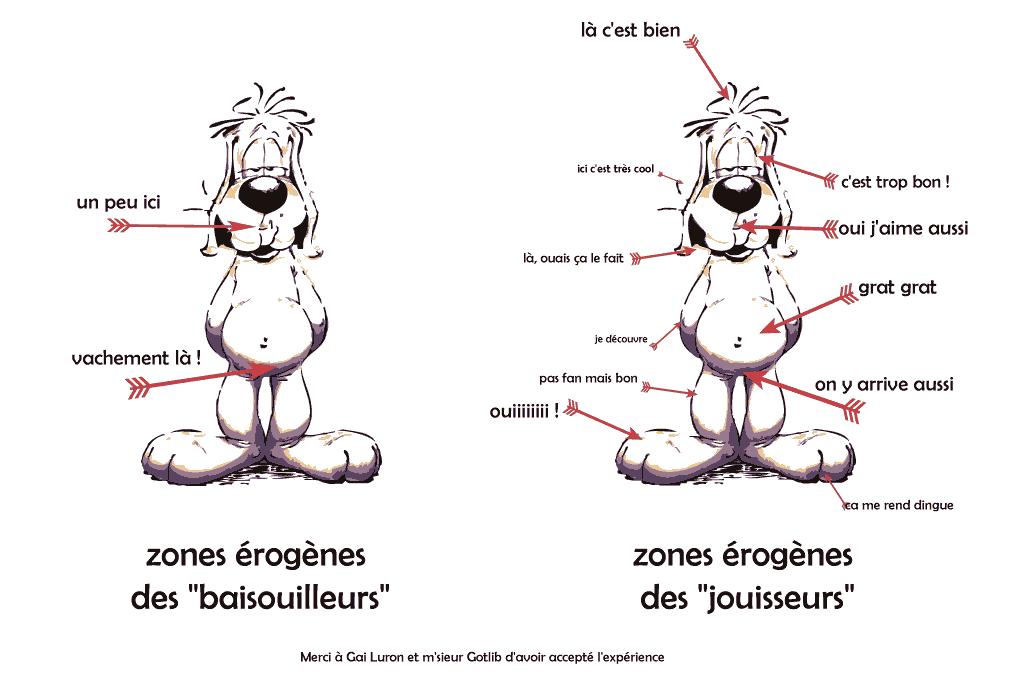 les zones érogènes