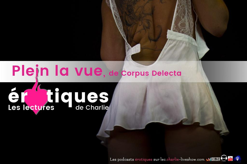 Plein la Vue de Corpus Delecta : le voyeurisme érotique