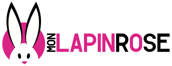 mon-lapin-rose-sexshop-love-shop
