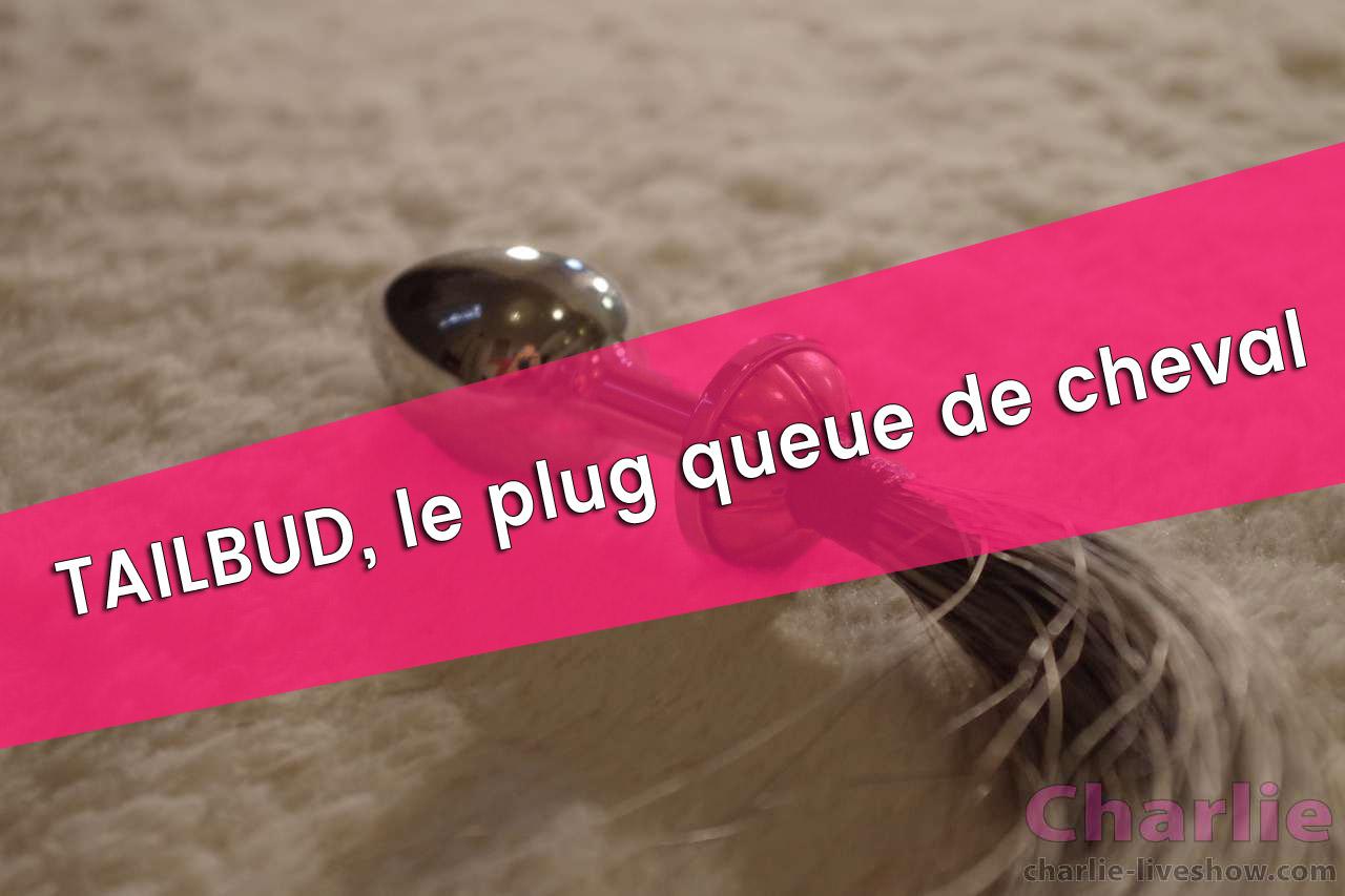 Plug anal : Le rosebud tailbud. Joue à devenir un cheval