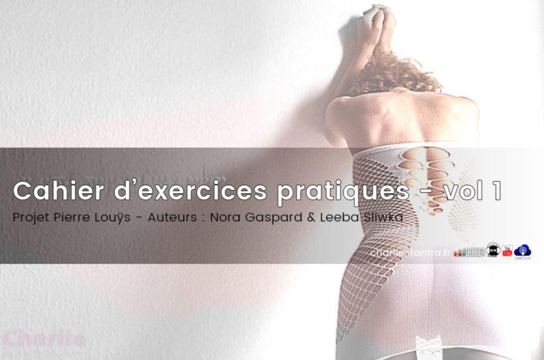 Pierre Louÿs : Cahier d'exercices pratiques vol1