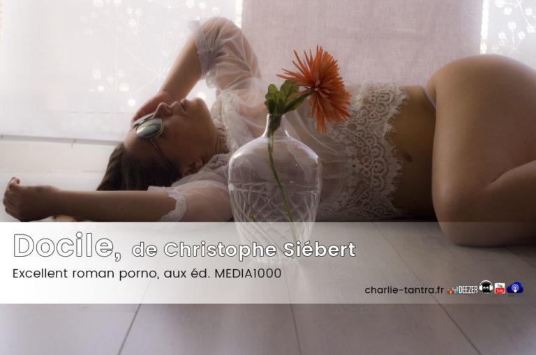 Docile, second roman porno de Christophe Siébert – J'ADORE !