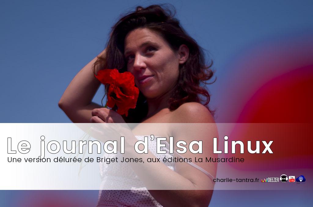 Le journal d'Elsa Linux. Une Bridget Jones version nymphomane