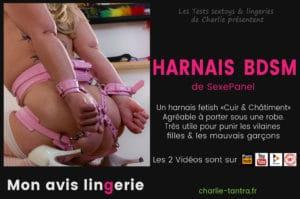 Read more about the article Harnais BDSM SexePanel. La lingerie fetish Cuir & Châtiment