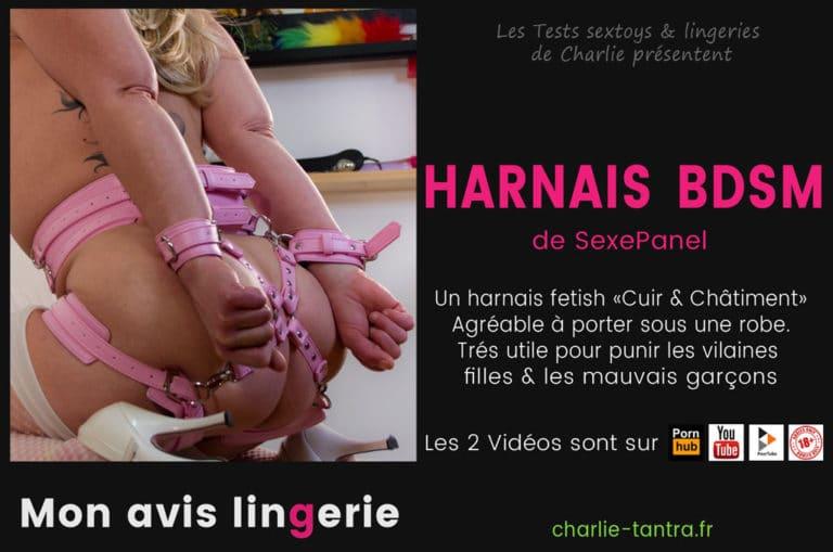 Harnais BDSM SexePanel. La lingerie fetish Cuir & Châtiment