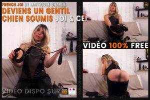 Read more about the article JOI soumission : deviens un chien soumis – FREE PORN